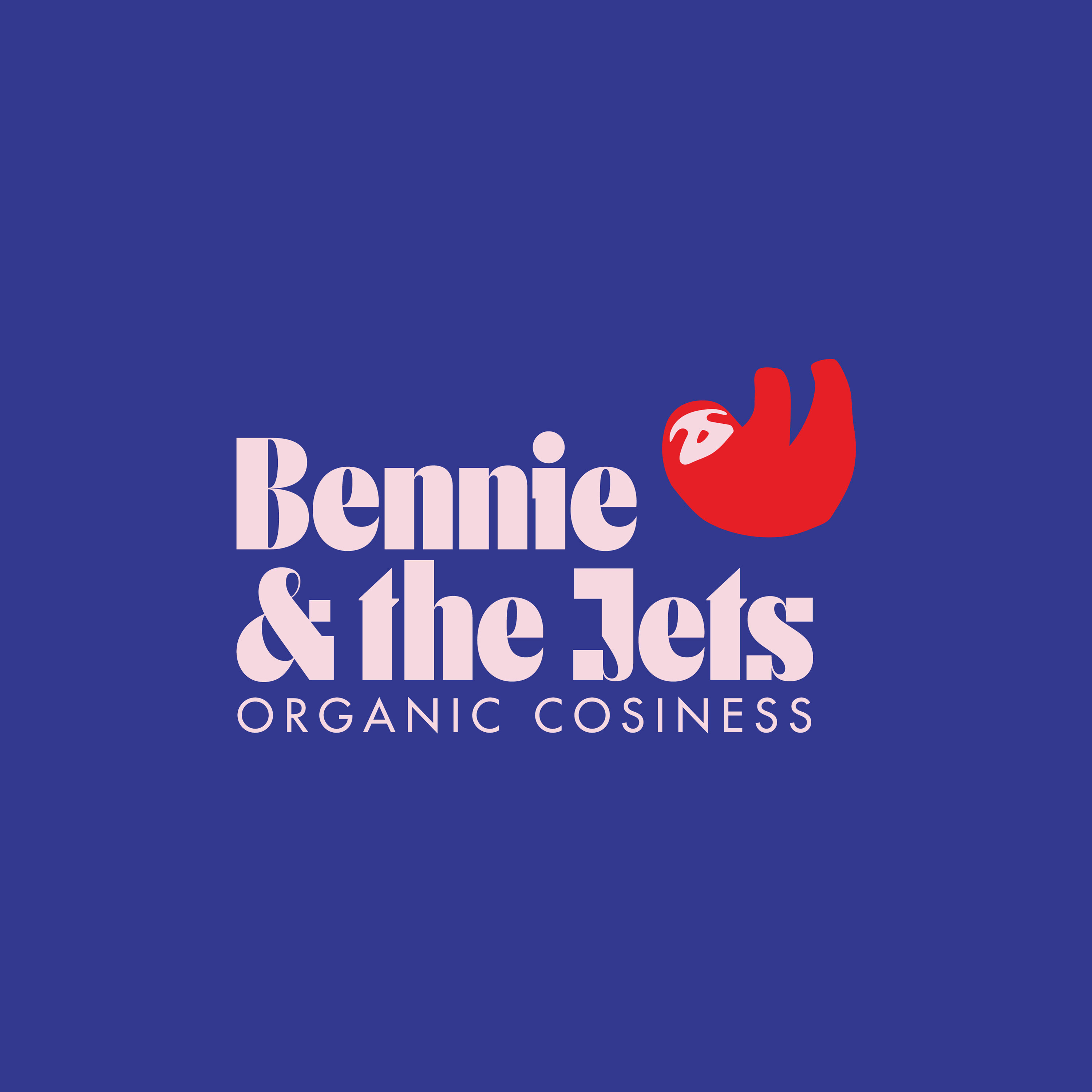 SOCIALMEDIA2_Bennie_and_the_jets_logo